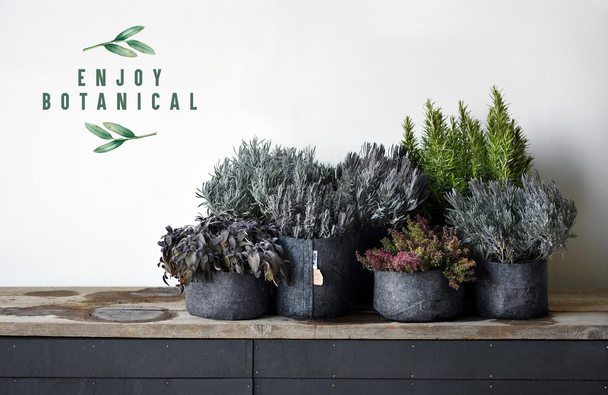 家で過ごす時間が増えたことによって、植物を育てる人たちが増えています。部屋に植物を飾る人、ハーブや野菜を育てて料理に使う人、ガーデンを作って家族や近所の人達に褒められる人。植物は人々をハッピーにしてくれます。そんなボタニカルライフを身近に提案できるようにクリエイティブでオリジナリティーあふれるブランドをご紹介します。